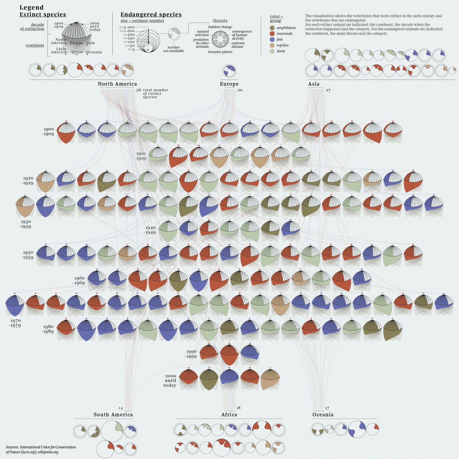 Extinct And Endangered Species Of Vertebrate Animals Infographic