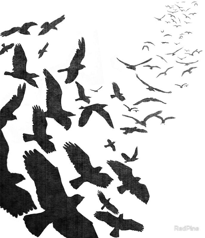 Flock Of Birds In Flight Art Print By Redpine Bird Tattoo And