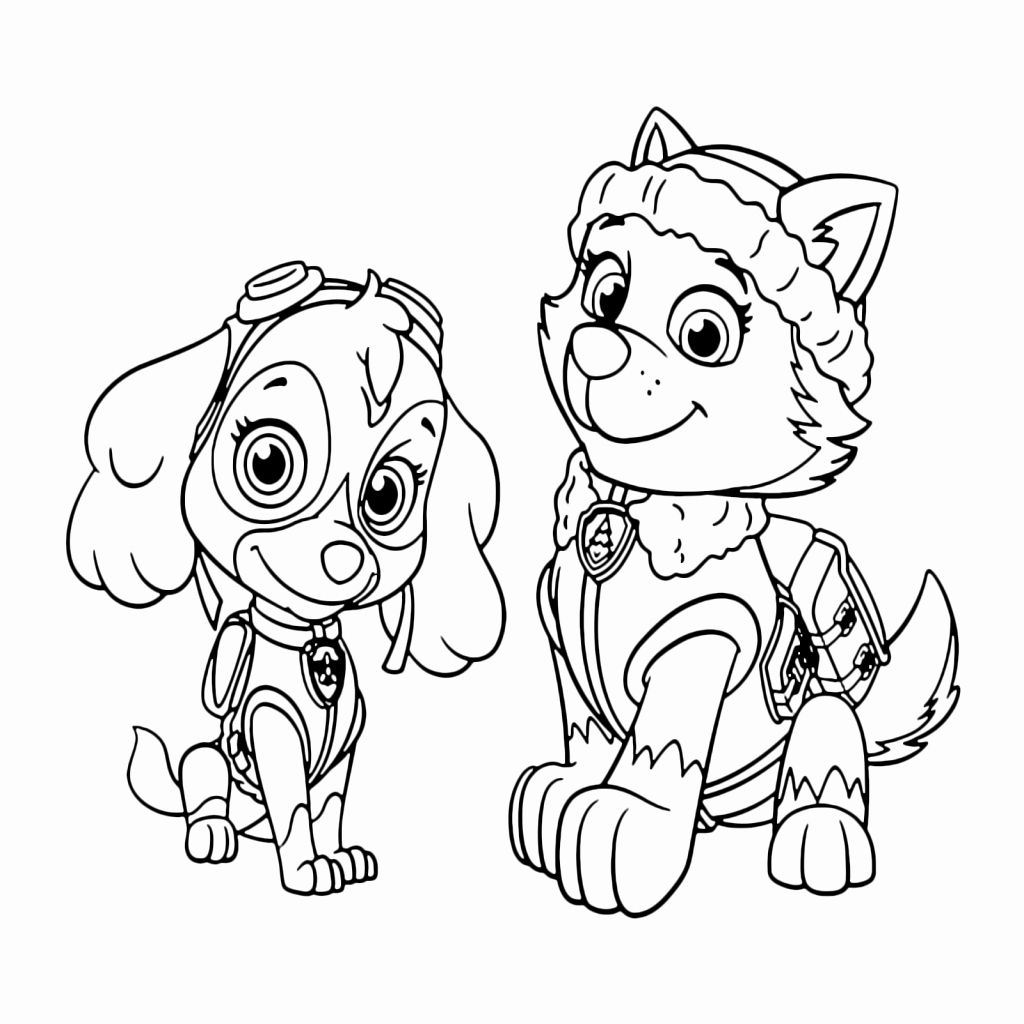 Skye Paw Patrol Coloring Page Elegant Top Kleurplaat Paw Patrol Skye Dog Sketch For Kleurplaten Disney