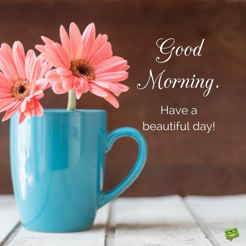 34 good morning quotes to make your day good morning good morning have a beautiful day m4hsunfo