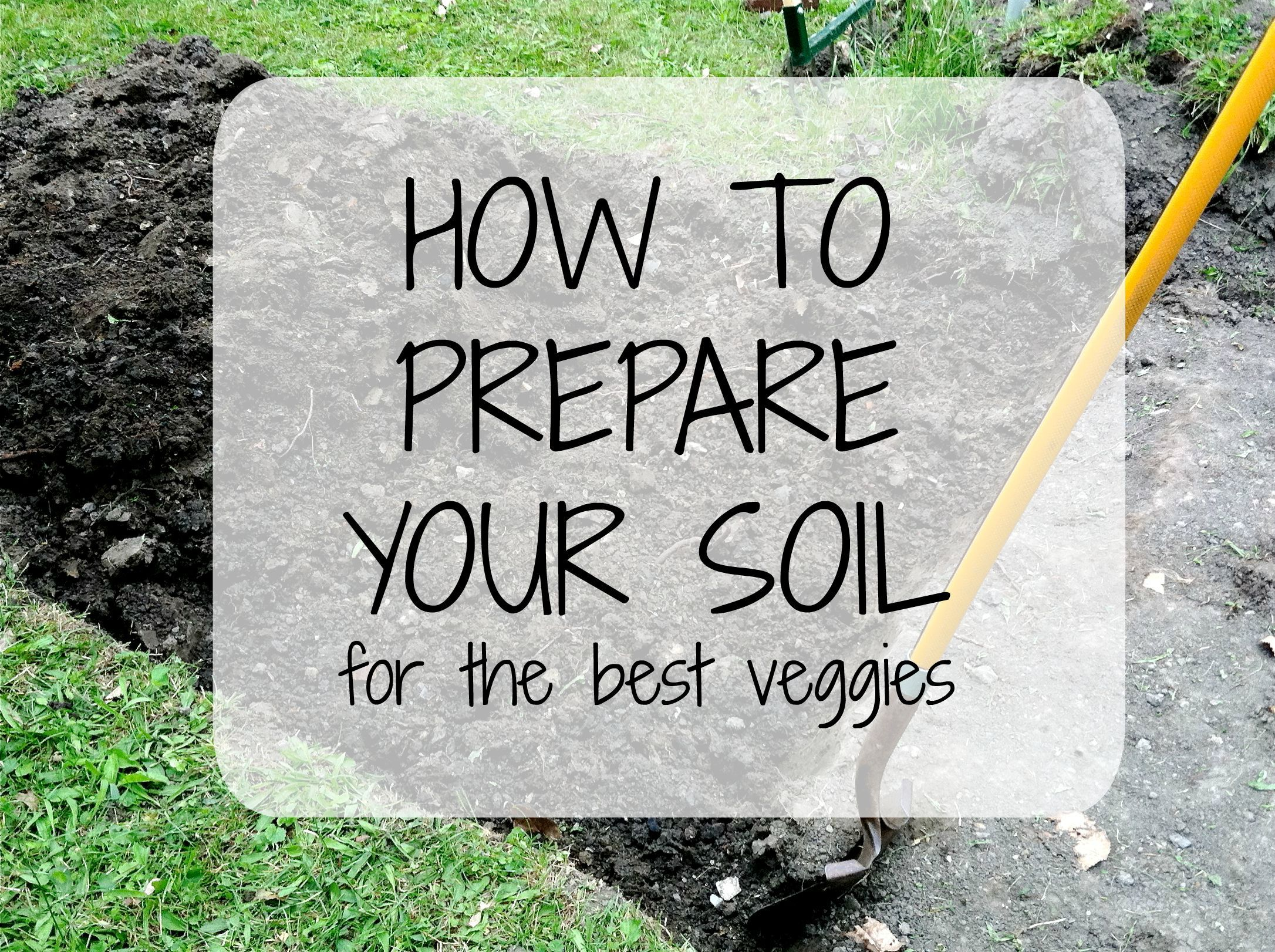 Bon Are You About To Start Planting Your Vegetable Garden? Get Your Soil Right  First And