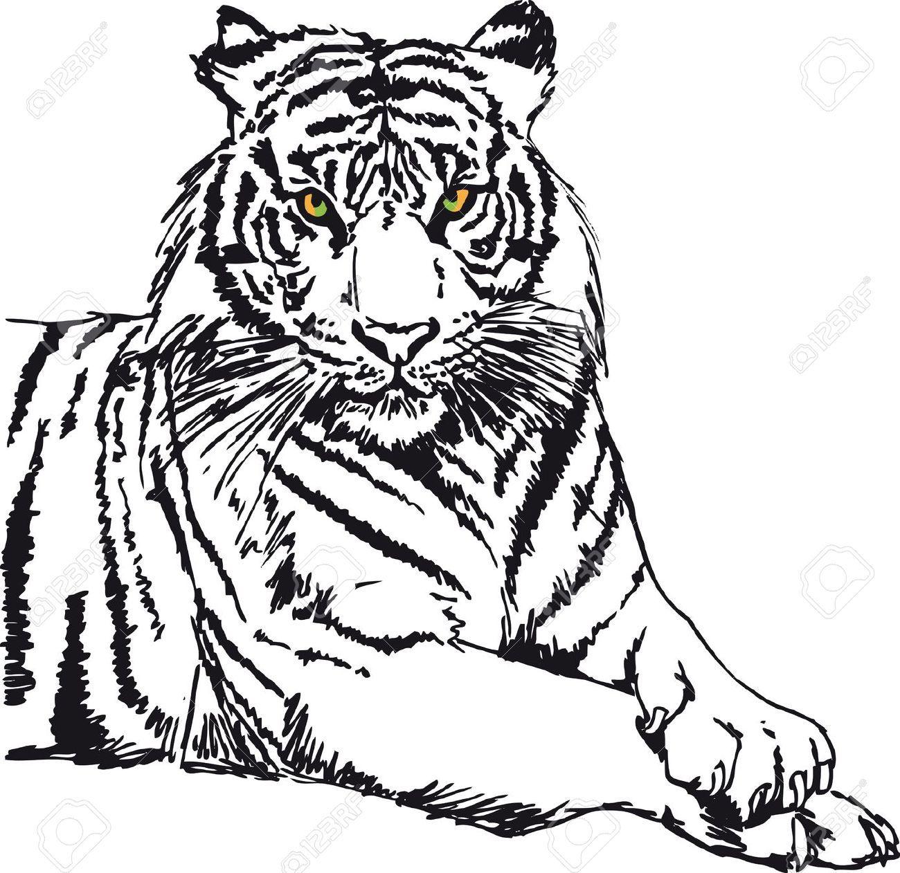 illustration of tiger pictures to pin on pinterest Yin Yang Lotus Mandala Yin Yang Mandala Coloring Pages