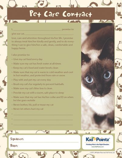 Pet Care Contract For Kids With Cats Kid Pointz Pet Care Pets Cat Kids