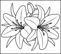 Flowers Coloring Pages Flower Coloring Pages Flower Drawing Easy Flower Drawings