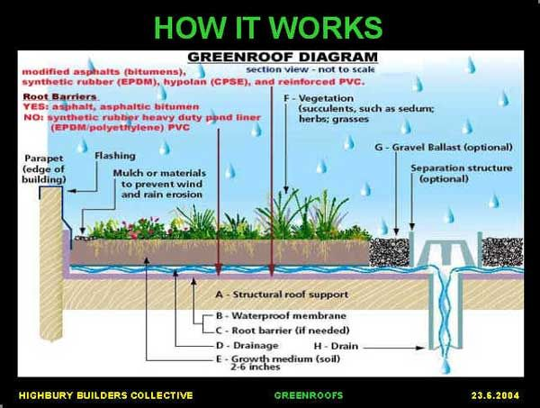 How It Works Typically The Cross Section Of A Green Roof