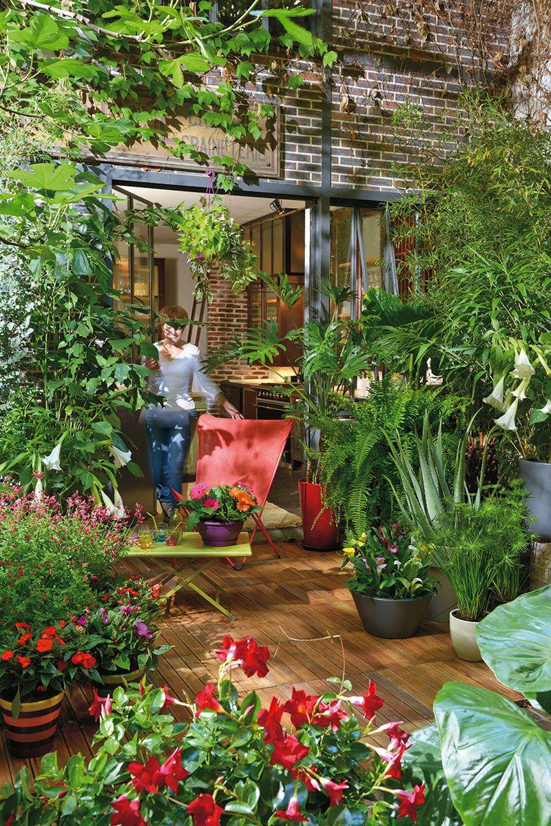Le jardin des tropiques ! | Beautiful, romantic and quirky ...
