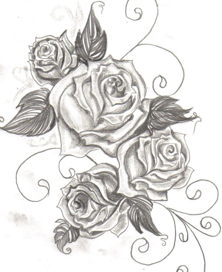 Net again tattoo ideas pinterest rose vines tattoo for Cool rose drawings