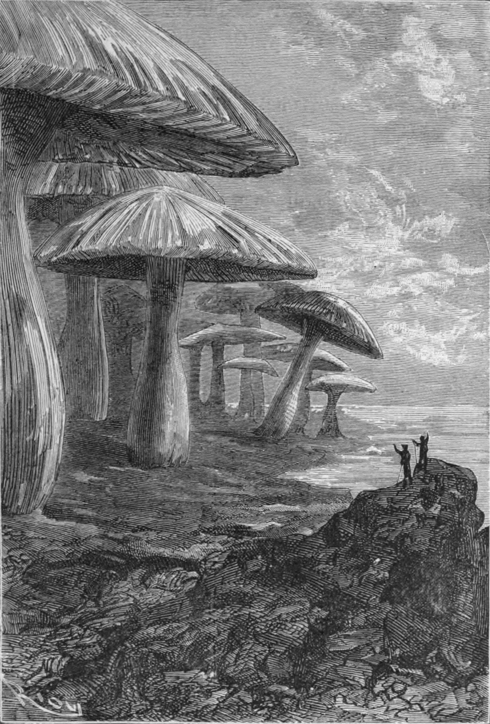 Image result for journey to the centre of the earth illustrations Edouard Riou