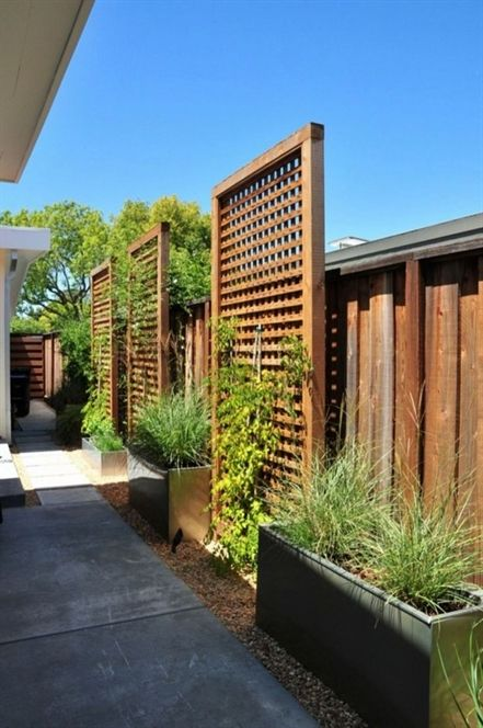 Best 10 Backyard Privacy Fence Landscaping Ideas On A Budget