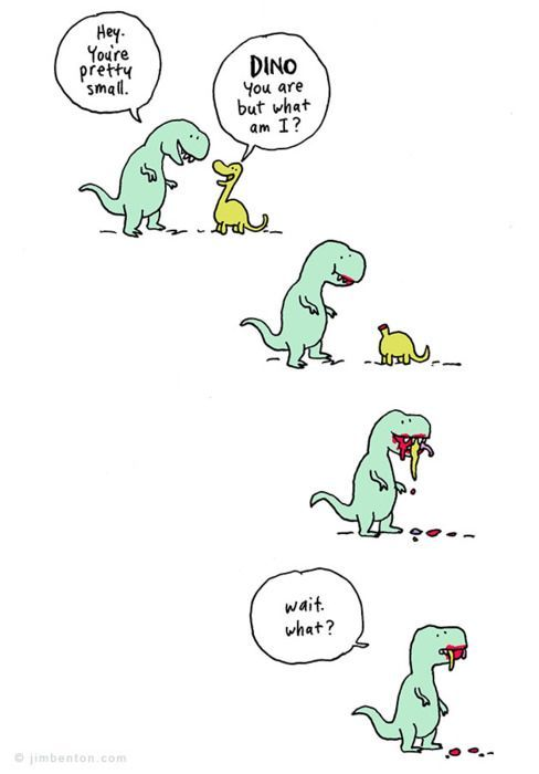 Wait What T Rex Humor Dinosaur Funny Funny
