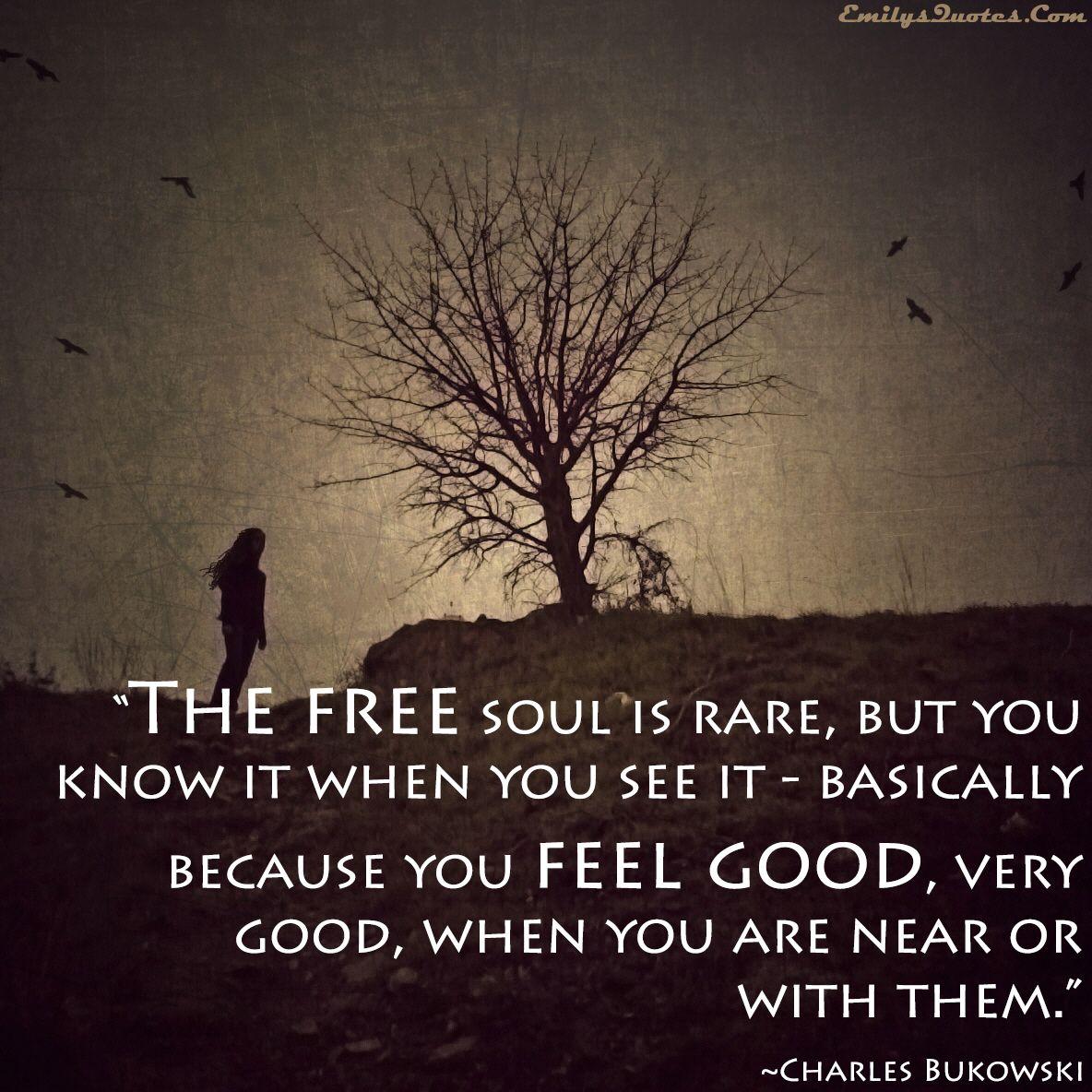 """The free soul is rare..."" - Bukowski ~ETS #bukowski #befree #spreadjoy"