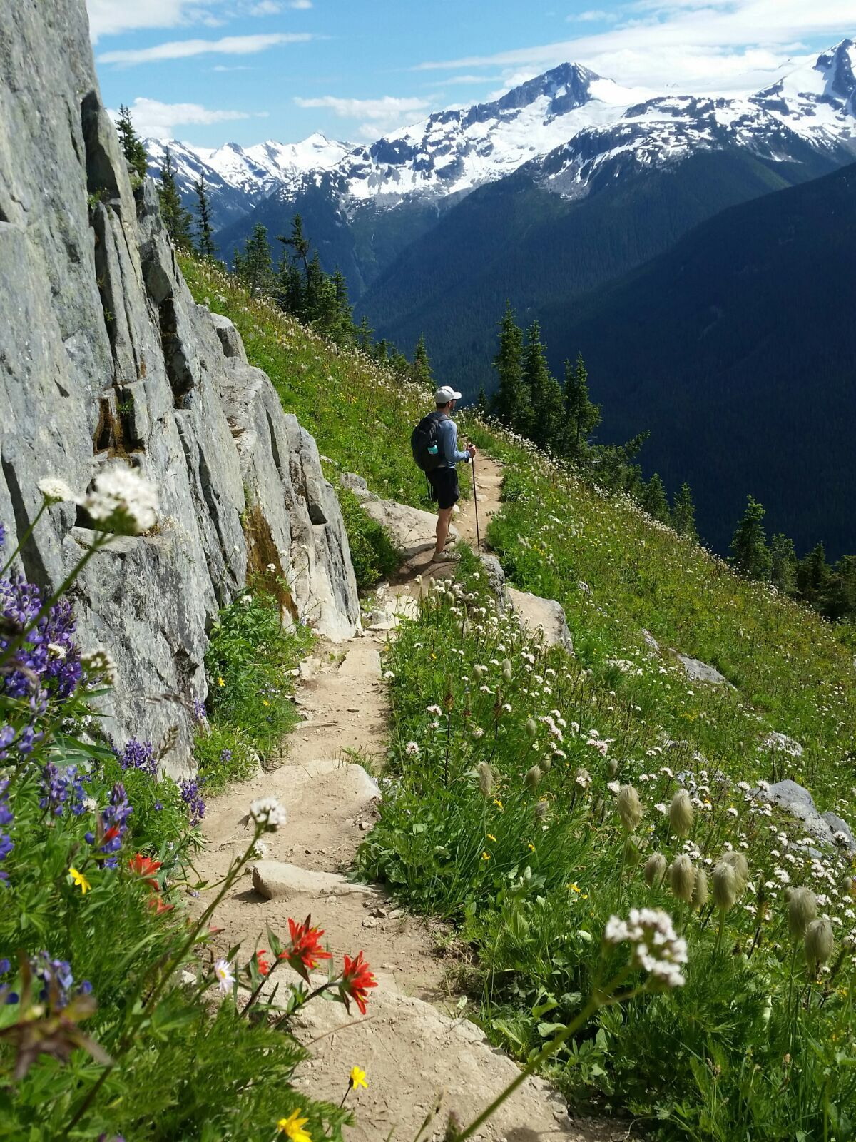 Bobby hiking the trails in whistler canada beautiful july