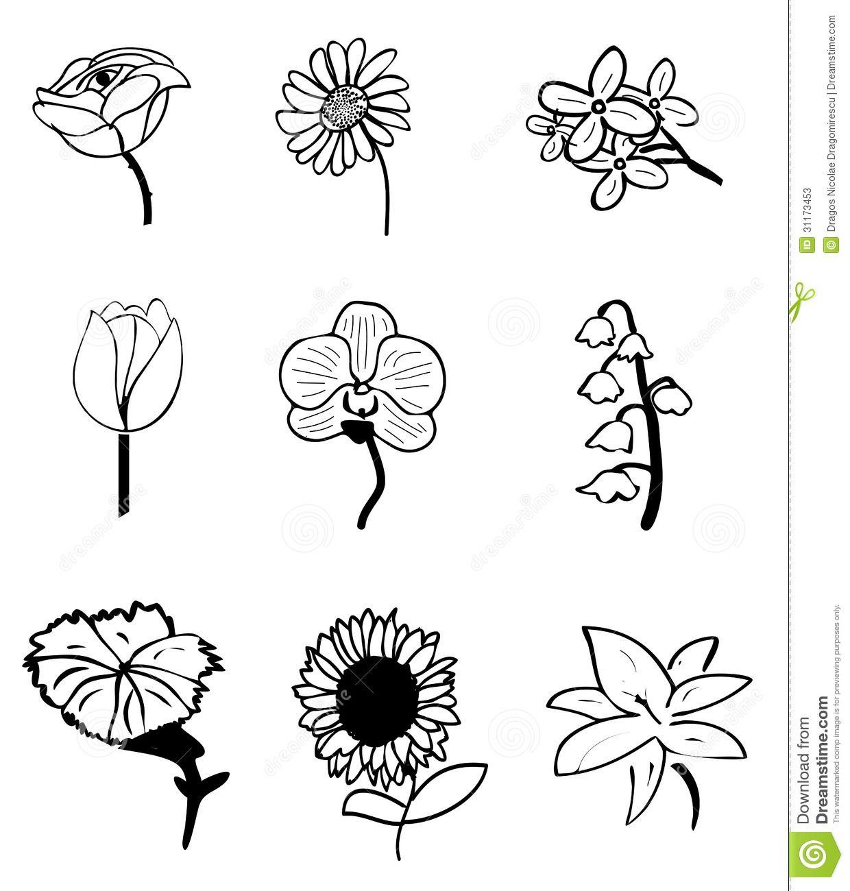 Image Result For Simple Flower Sketch