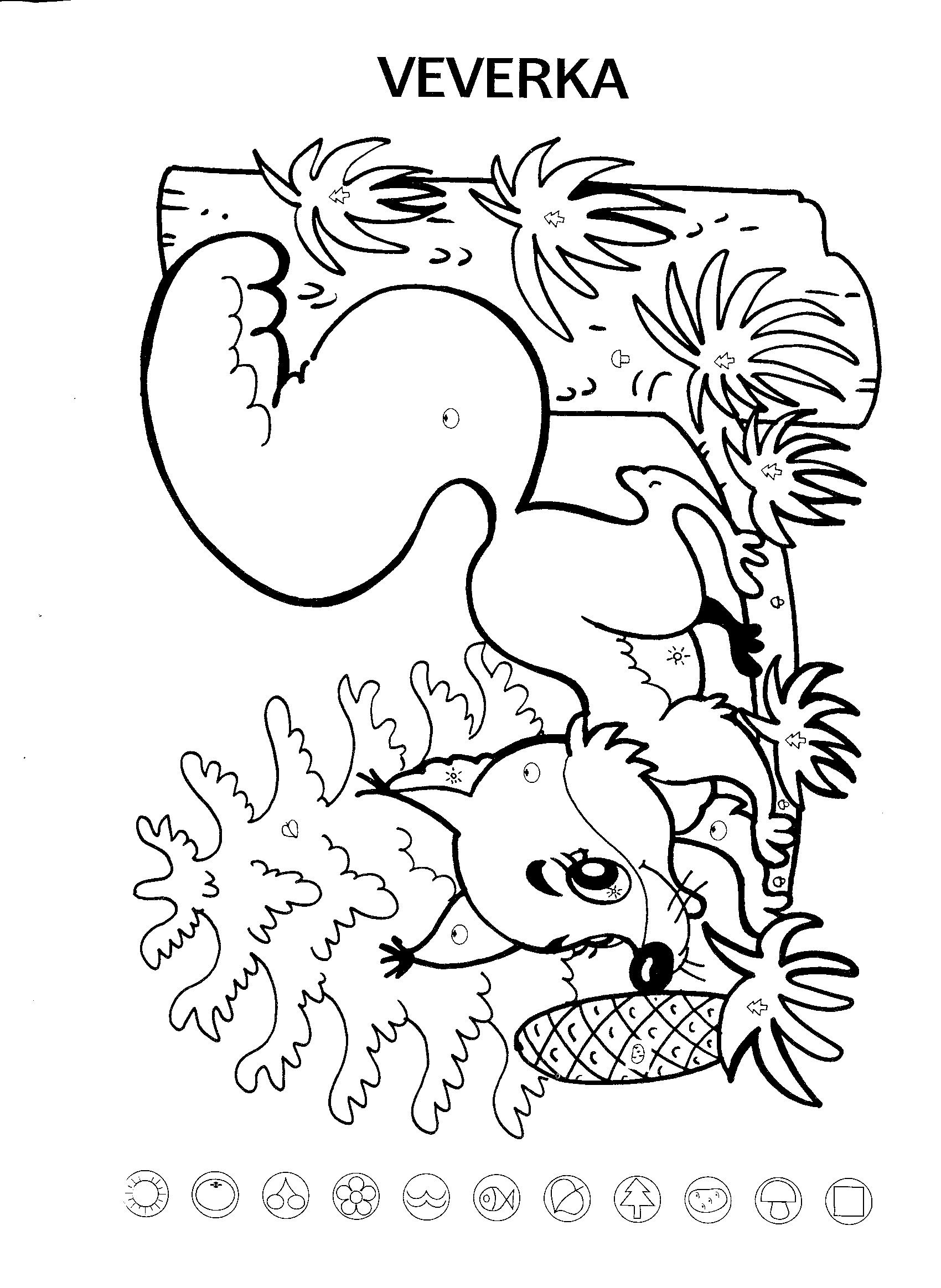 Veverka | Stromy, keře, zvířata v lese | Pinterest | Estrés, Bosques ...