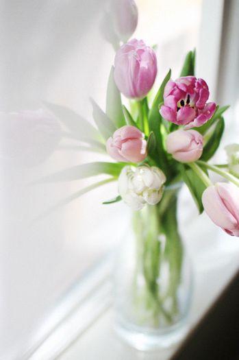 M'offrir des fleurs le plus souvent possible. Apprendre à compose de jolis bouquets.