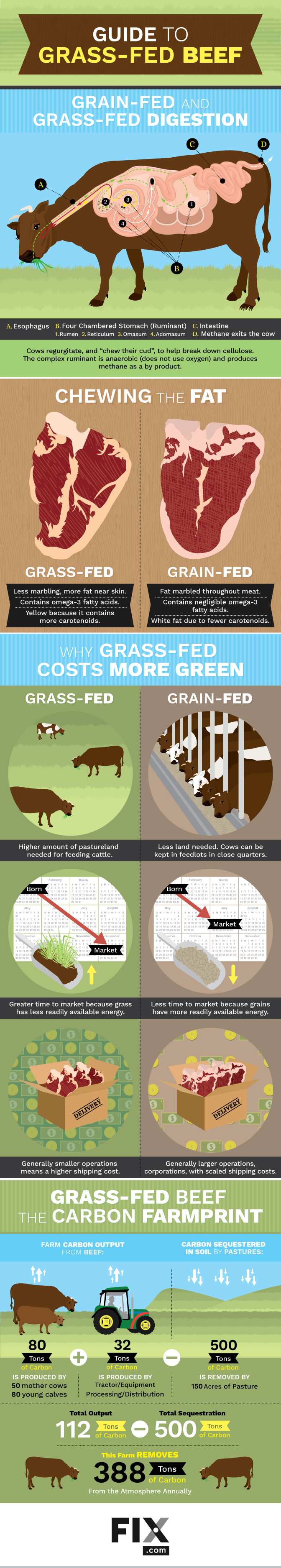 Guide to Grass-Fed Beef