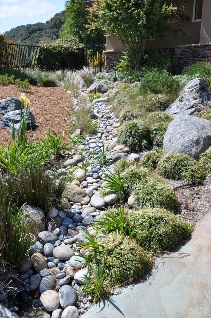 Dry Creek Bed Landscaping Designs Grasses in Dry Creek