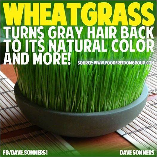 Via Natural Cure Not Medicine Daily Consumption Of