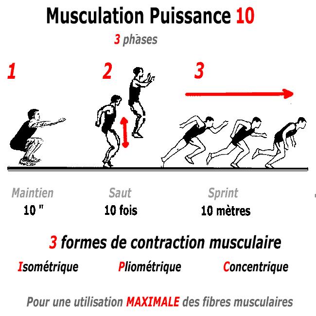 Programme musculation pour gagner en puissance physique for Programme de sport musculation