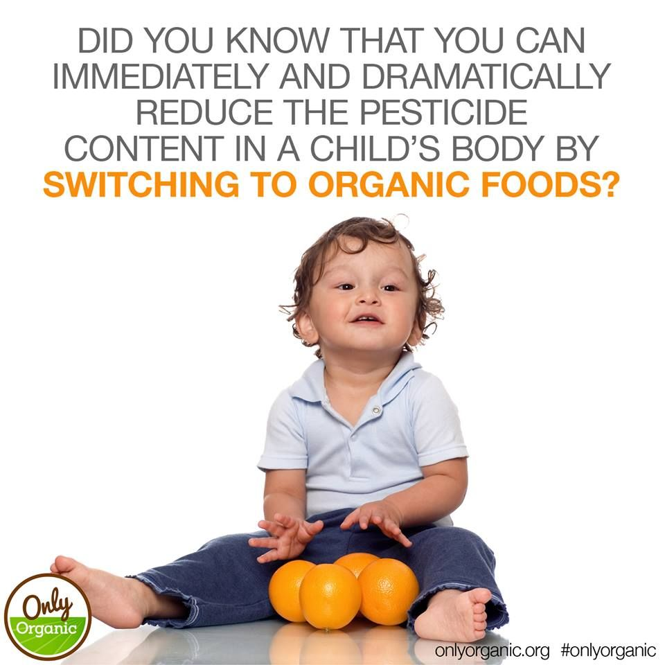 Babies, toddlers and kids are more vulnerable than adults to pesticide exposure. Young digestive tracts absorb toxins more readily than adults', and young kidneys don't detoxify as efficiently as adult kidneys. As a result, toxins circulate longer in babies' bodies, boosting exposure to four times that of adults. Learn more here: http://www.onlyorganic.org/blog-post-11  #Pesticides #HumanHealth #MomApproved #HealthyChild