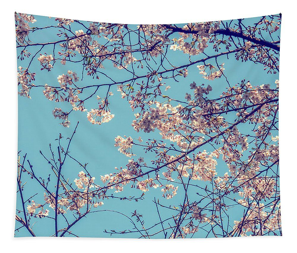 Cherry Blossom Tapestry For Sale By Patricia Hofmeester Cherry Blossom Art Blossoms Art Nature Photos