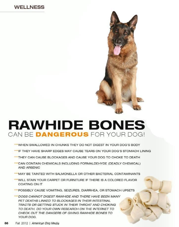 dog swallowed rawhide