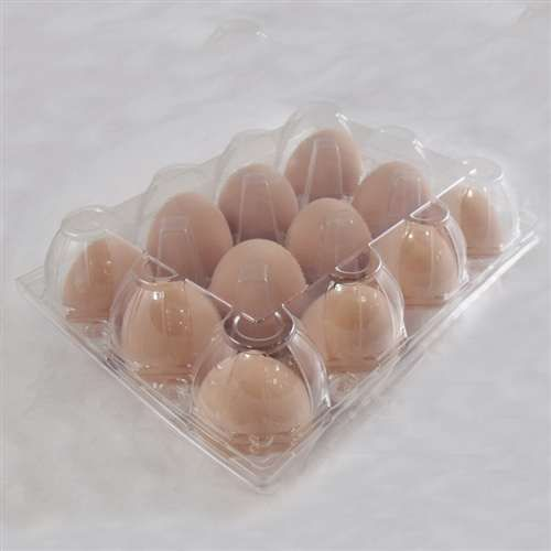 Vintage Egg Carton Plastic Un Labeled Egg Stamp Fun Cupcakes Cupcake Candle