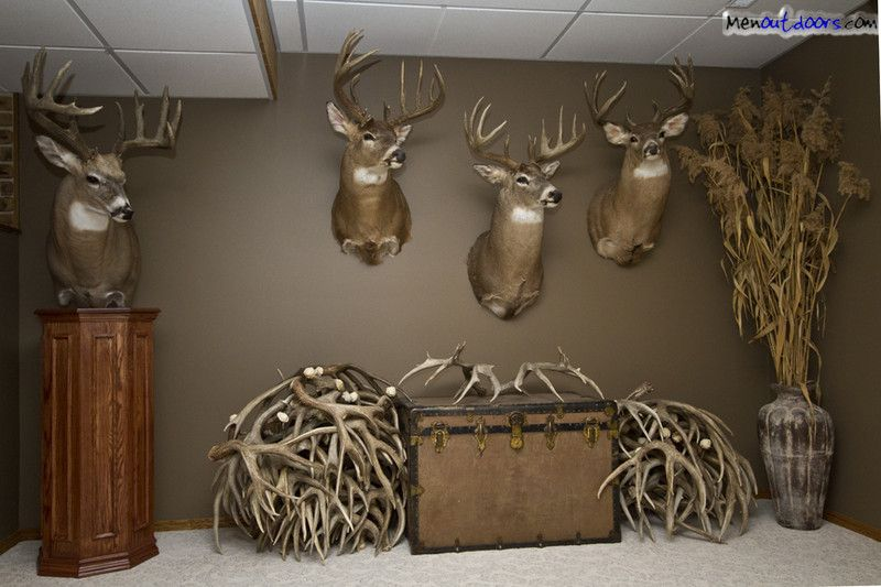Man Caves Trophy Room