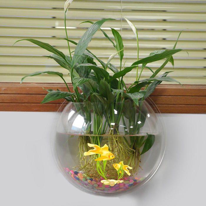plante aquatique jetez vous l 39 eau en 47 photos bonne id e plantes. Black Bedroom Furniture Sets. Home Design Ideas