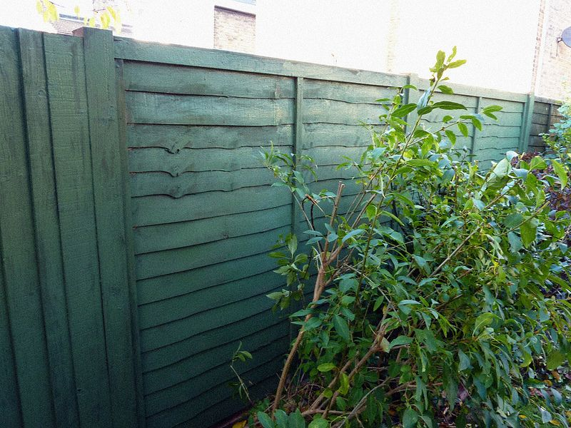 How To Spray Paint A Garden Fence