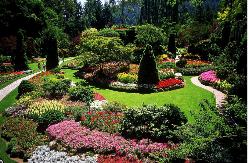The Basic Landscape Design Ideas Color Form Line Scale Texture Are Introduced With Pictures To Illustrate How They Landschaftsdesign Garten Design Garten