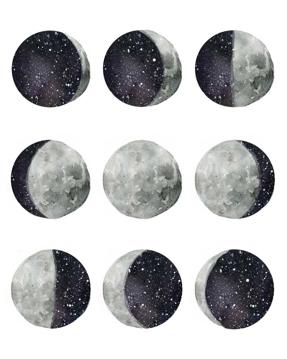 Phases Of The Moon Mouton Dessin Peinture Art Figuratif
