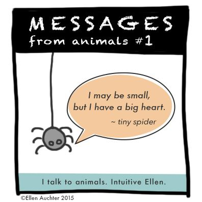 Messages from Animals #1