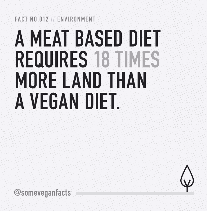 A meat based diet requires 18 times more land than a vegan diet. #vegan #govegan #veganfacts #veganquotes