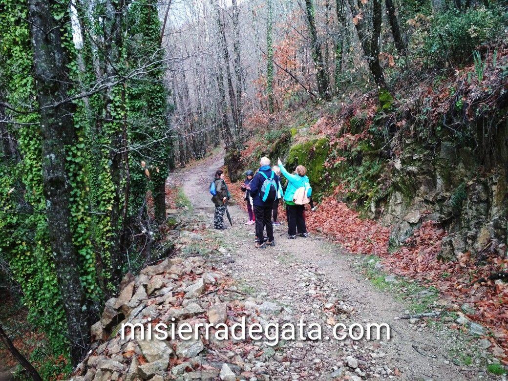 Senderismo Senior En Sierra De Gata Cáceres Senderismo Rutas Sierra
