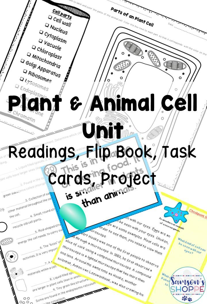 Plant and Animal Cell Unit includes Worksheets Task Cards, Flip Book ...