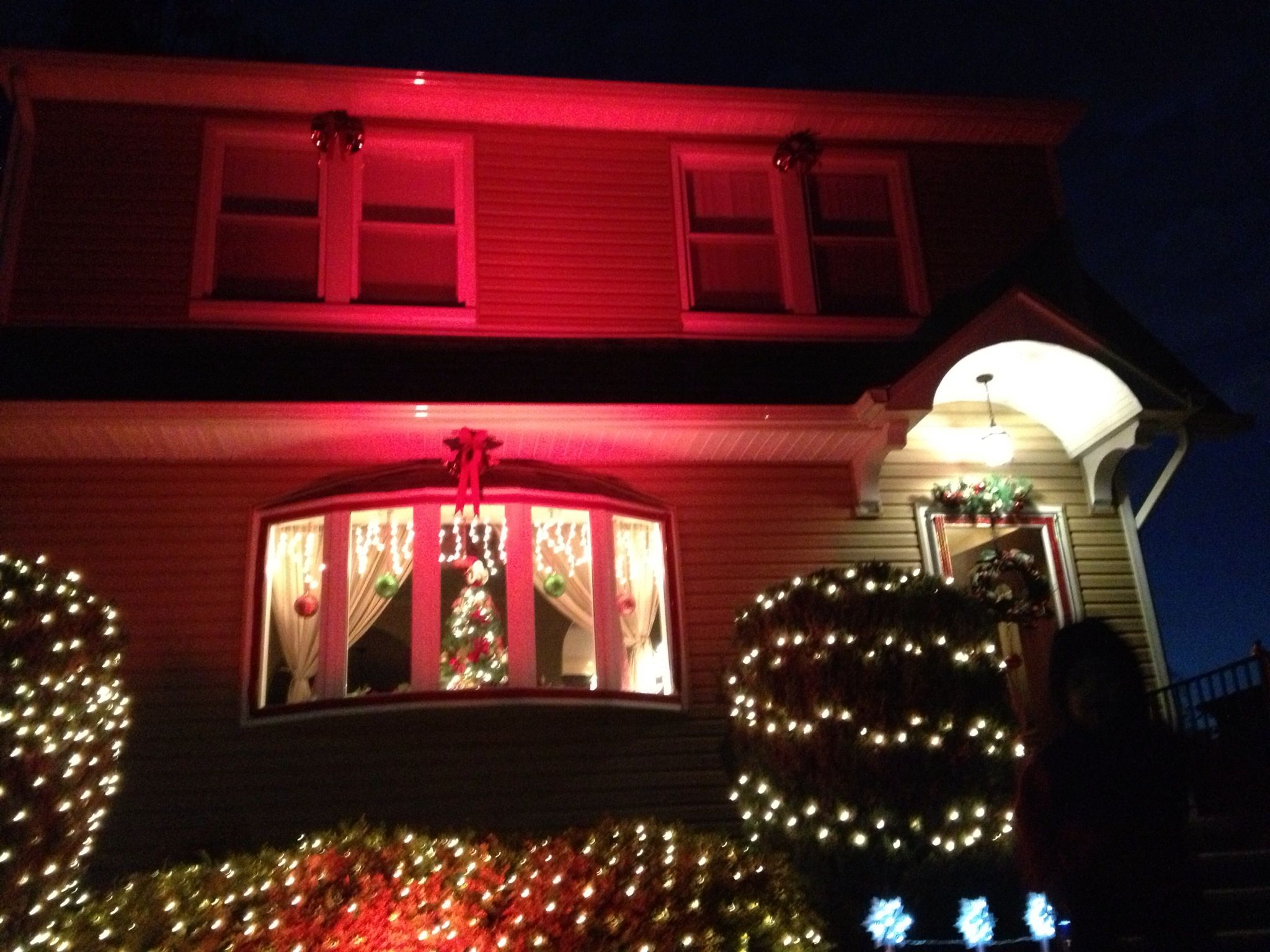 I M So Hy With My Red Spotlight Christmas Outside Decoration