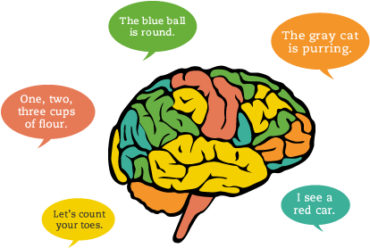 Important facts about your child's Brain Development ...