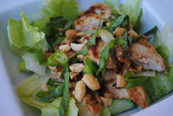 Been hankering for some Lemon Grass chicken like the New Thai restaurant has at Yonge and St. Clair.  Hope this is similar....Lemon Grass Chicken Salad
