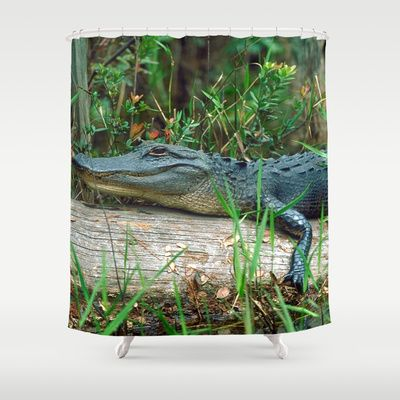 Young Alligator Shower Curtain Shower Curtain Curtains Shower