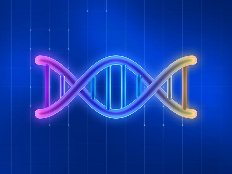 DNA by Sandor #Design Popular #Dribbble #shots
