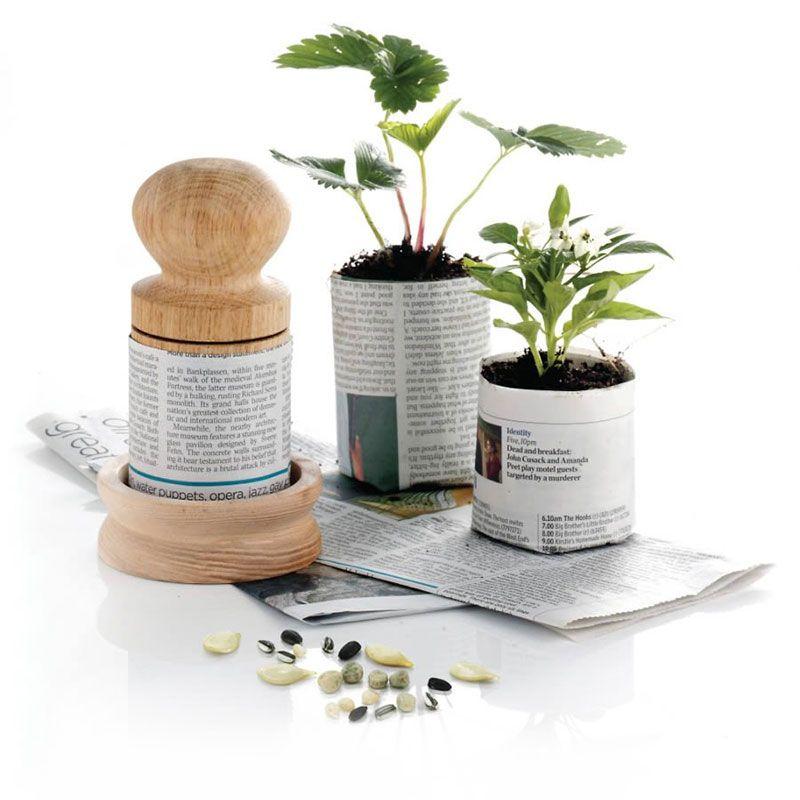 Diy Biodegradable Pots: Paper Pot, Biodegradable Products