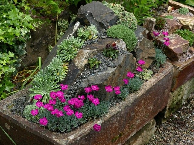 Alpine Garden Design Delectable Inspiration