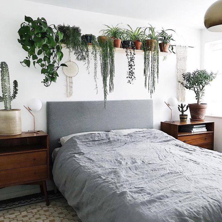 картинки спальни растения рядом соседствуют