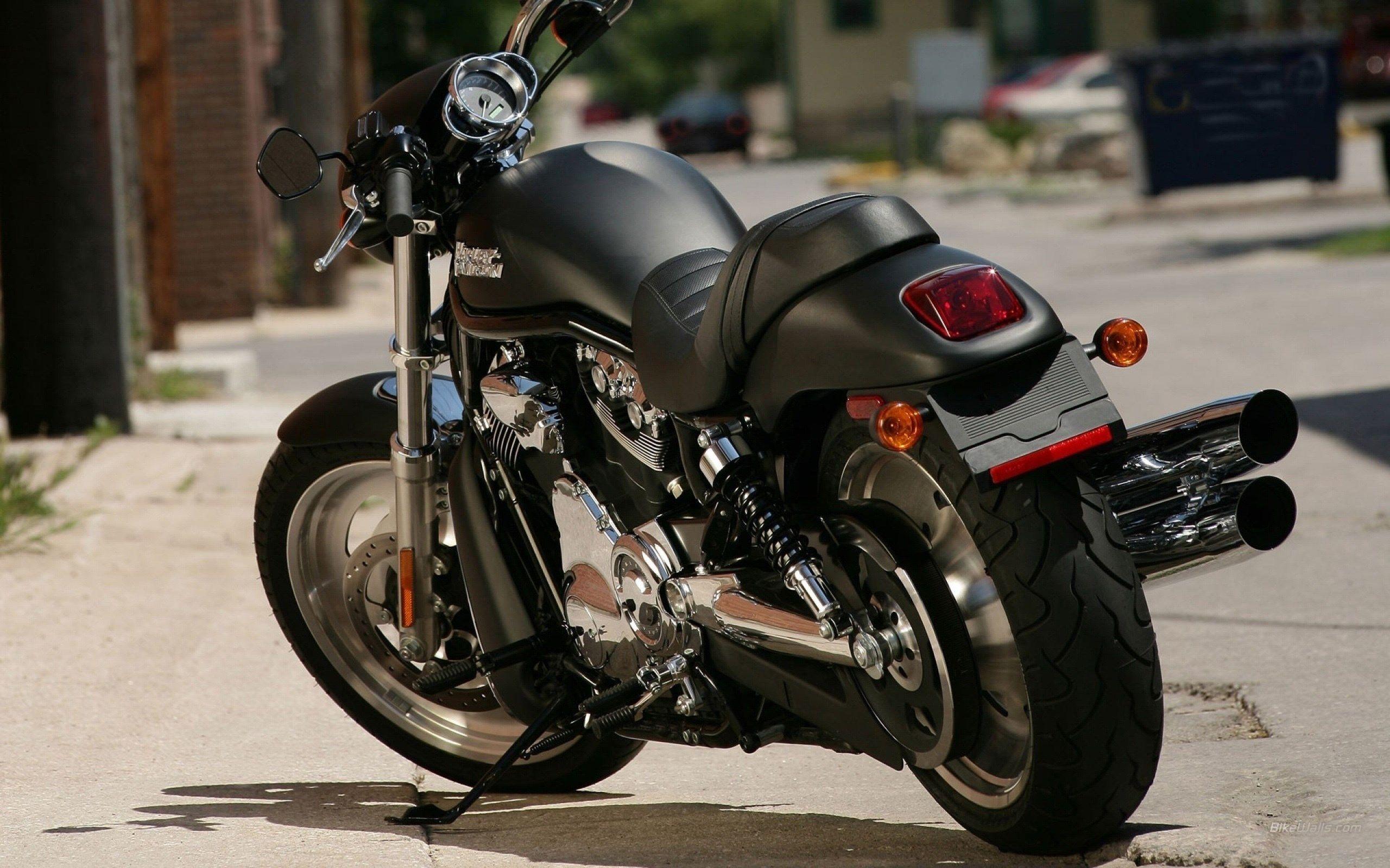 Harley Davidson Quotes Harley Davidson Back View Bike Wallpaper Hd  Ololoshka