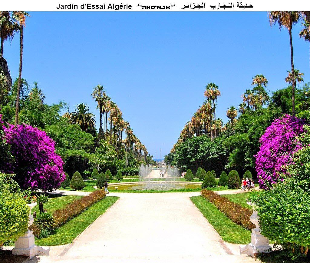 Jardin D Essai D El Hamma Alger Jardins Paysage