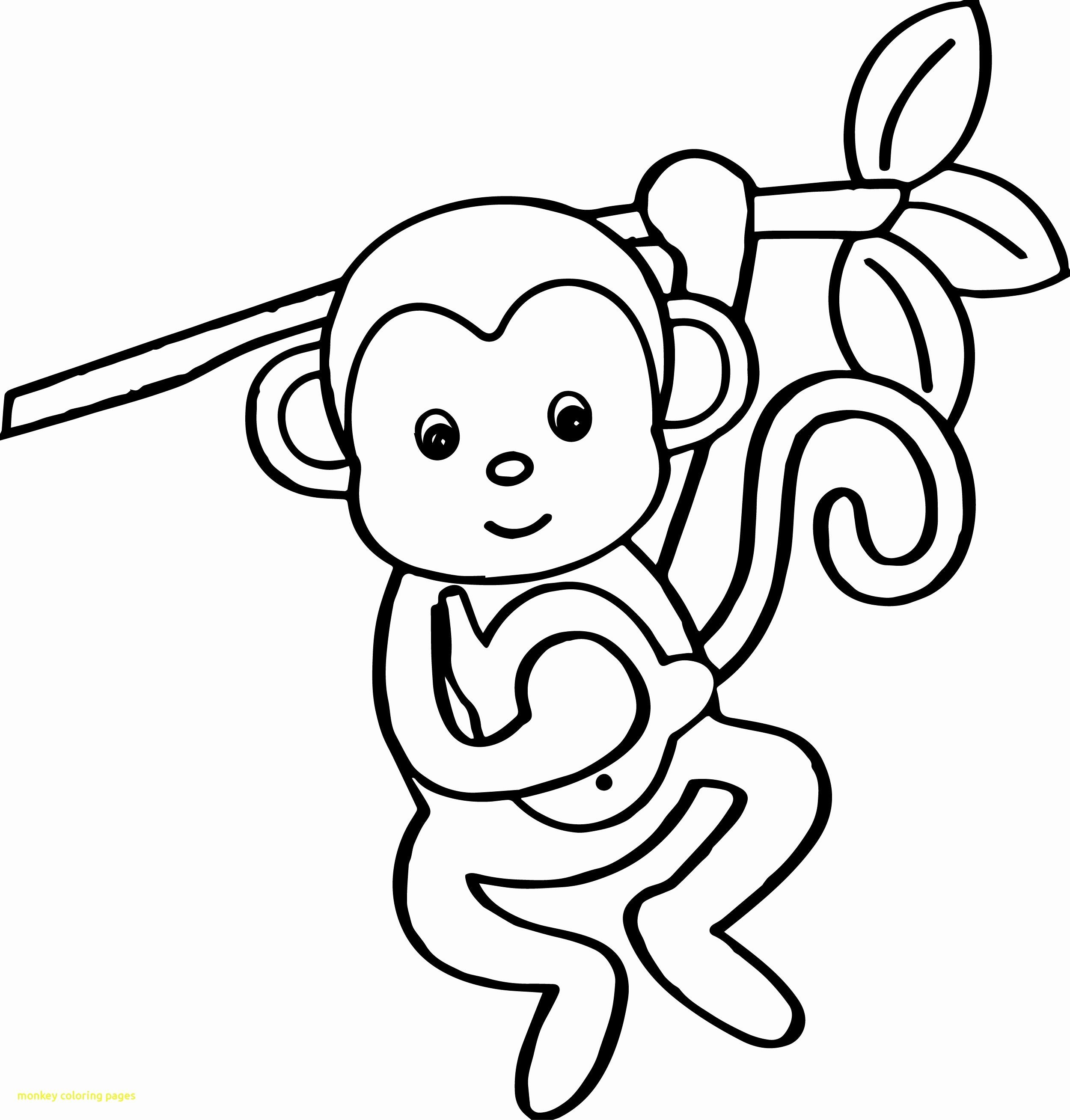 Coloring Pages On Monkeys Awesome Archive With Tag Monkey Puzzle Colouring Pages Animal Coloring Pages Monkey Coloring Pages Cartoon Coloring Pages