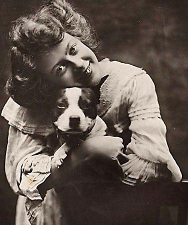 vintage american pit bull terrier | Flickr - Photo Sharing!  |American Pit Bull Terrier Vintage