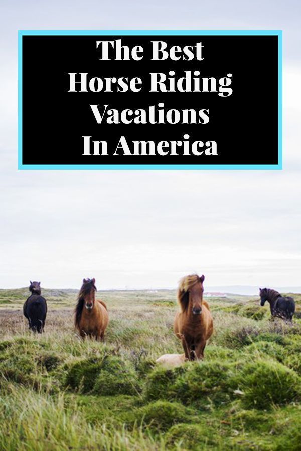 The Best Horse Riding Vacations In America #vacationdestinations