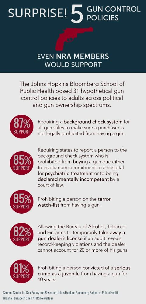 gun control proposal essay